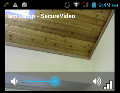 Volume bar on other person's video tile