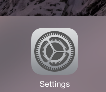 Settings icon in iOS
